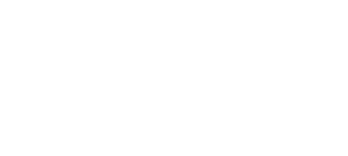 Import and Export Solutions